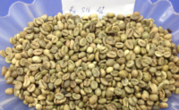 Robusta Vietnam Grade 1 Screen 16