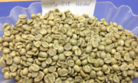 Washed Arabica Vietnam Grade 1 Screen 18