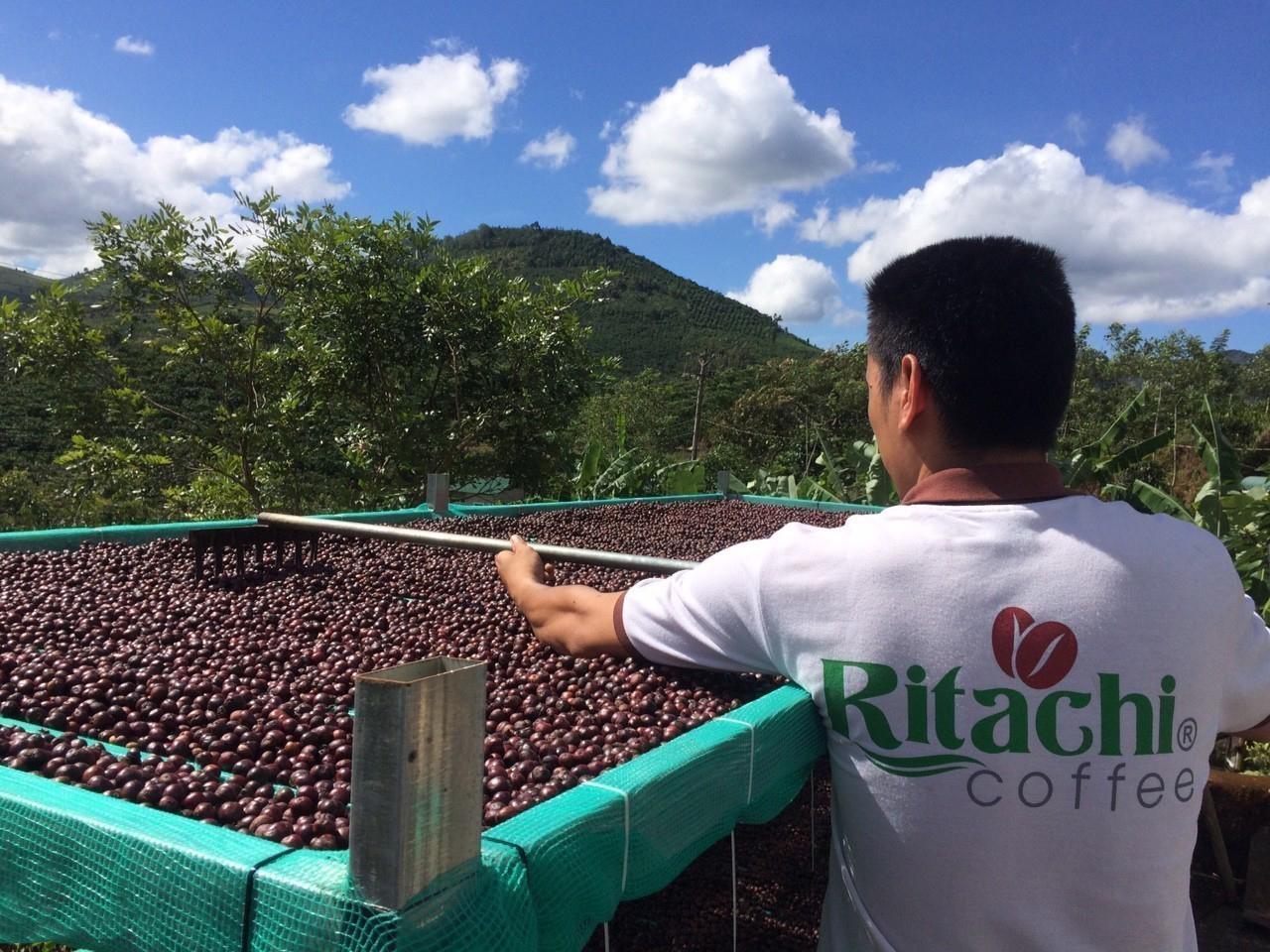Điểm lại xu hướng thực phẩm xanh trong dịp Tết nguyên Đán 2019 – Cà phê sạch RITACHI COFFEE